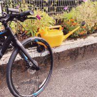 自転車で水やり